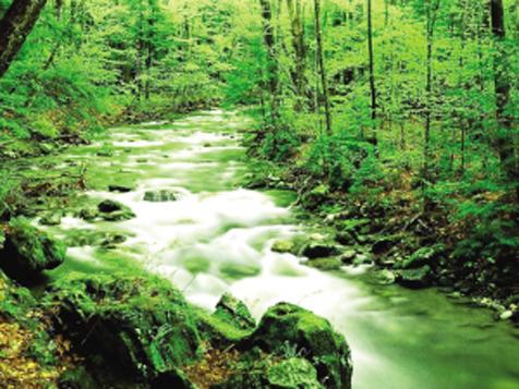 京津冀地區及長江經濟帶今年將劃定生態保護紅線